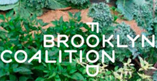 brooklyn-coalition