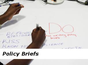 policybriefsfinal