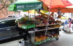 East Harlem Food Projects