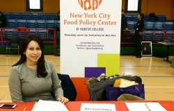 Director of Community Projects Diana Johnson tables at Harlem Children's Zone's winter health fair in January