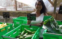 Community Organizer Renata Thakurdyal at a weekly pick up at the Urban Garden Center in East Harlem
