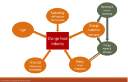 Strategies for Changing Food Industry.  Credit: Action for Healthy Food