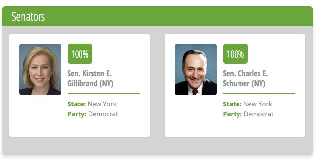 senate NYS